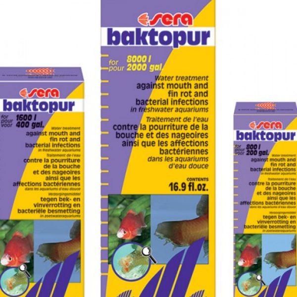 bactopur-510x600